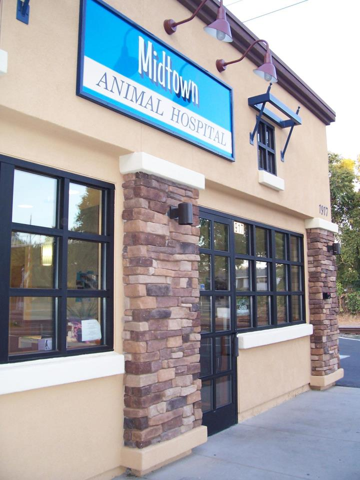 Midtown Animal Hospital - Veterinarians serving West Sacramento, midtown Sacramento, Downtown Sacramento, North Oak Park, Carmichael, and Elk Grove