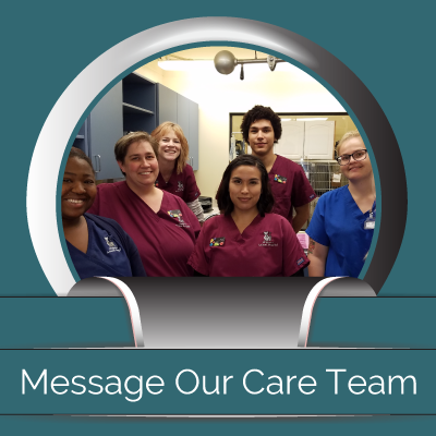 Midtown Animal Hospital - Sacramento, CA - Message Our Care Team